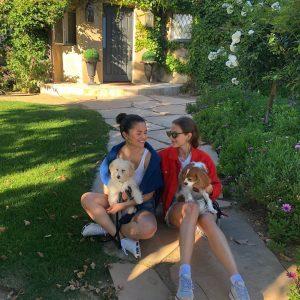 23 июня @annaballins на Инстаграме: Ваши районные мамы щенков 👍